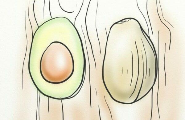 Avocados contain Beta-Sitosterol
