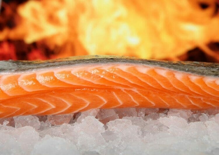 Salmon is an excellent source of Omega-3 Fatty Acids
