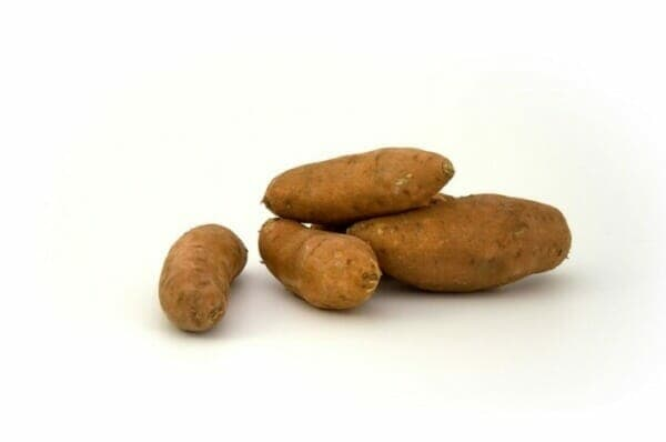 Sweet Potatoes have a lower glycemic index than regular potatoes