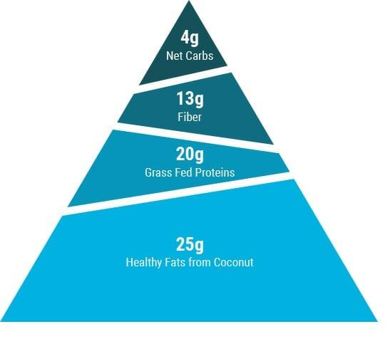 Bear macronutrient pyramid