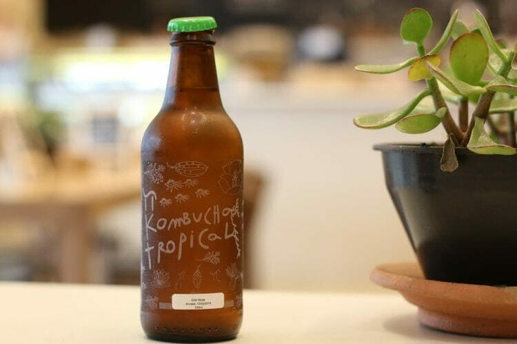 Fermented drinks have a lot of probiotics