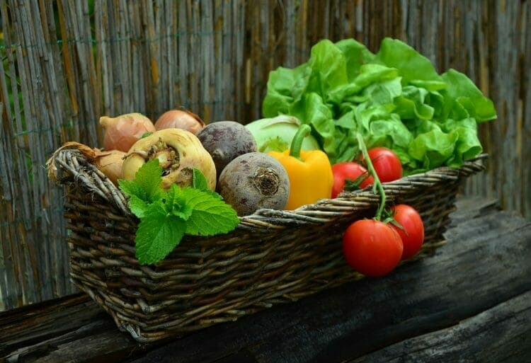You cannot overeat on fresh veggies