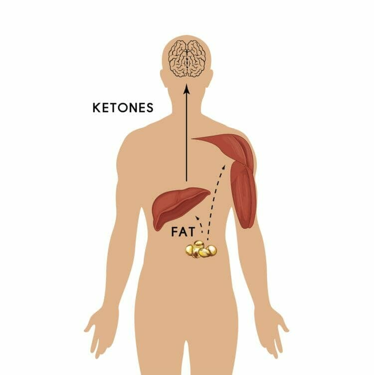 What does keto mean?