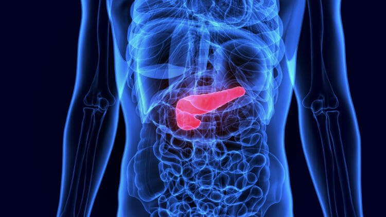 Keto doesn't cause gallstones