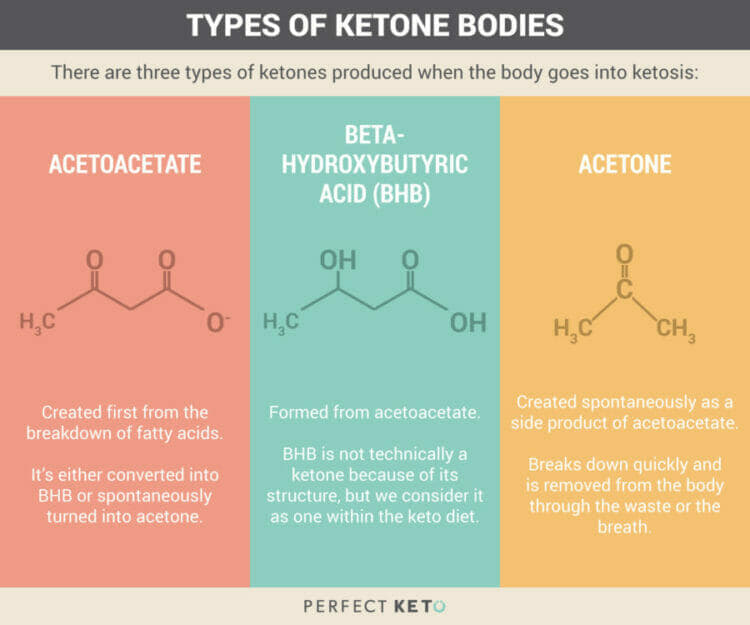 Types of Ketone Bodies