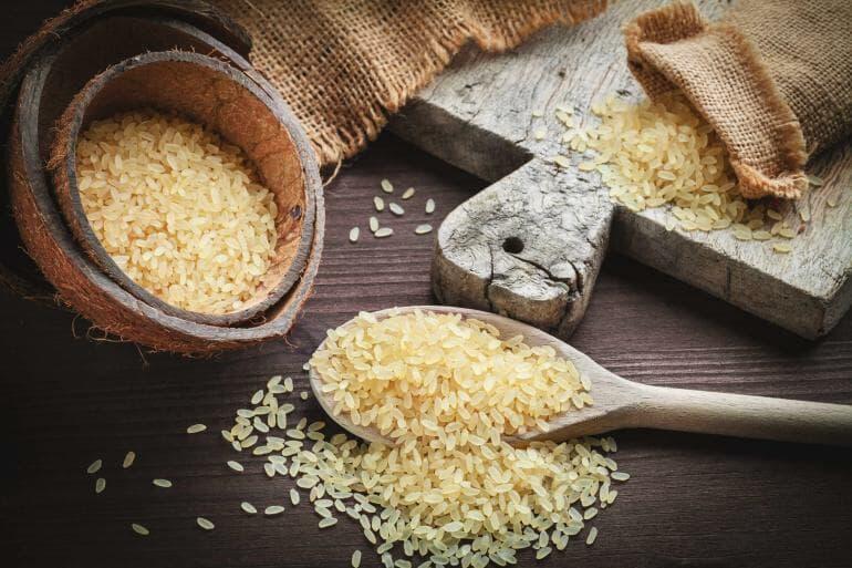Best Rice Protein Powder