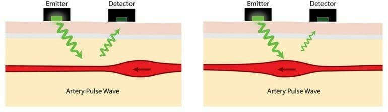 How optical heart rate sensors work