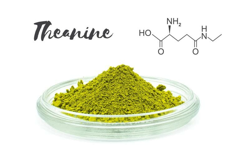 Theanine is an amino acid found in certain teas