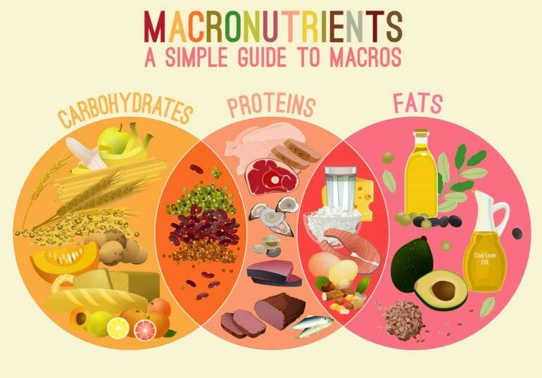 Only two of the three macronutrients are essential