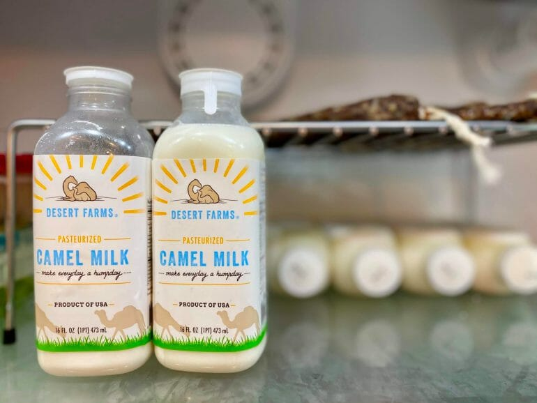 Camel milk and the ketogenic diet