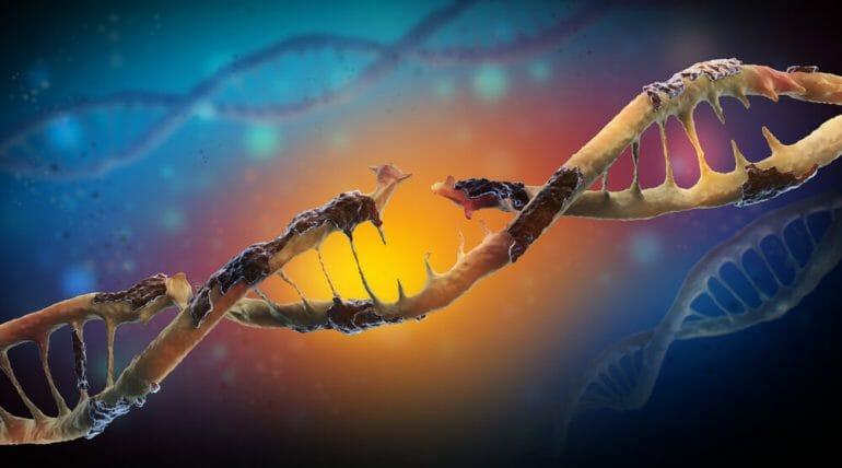 Genomic-Instability