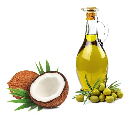 HLTH Code uses coconut and olive oil as its primary sources of fat