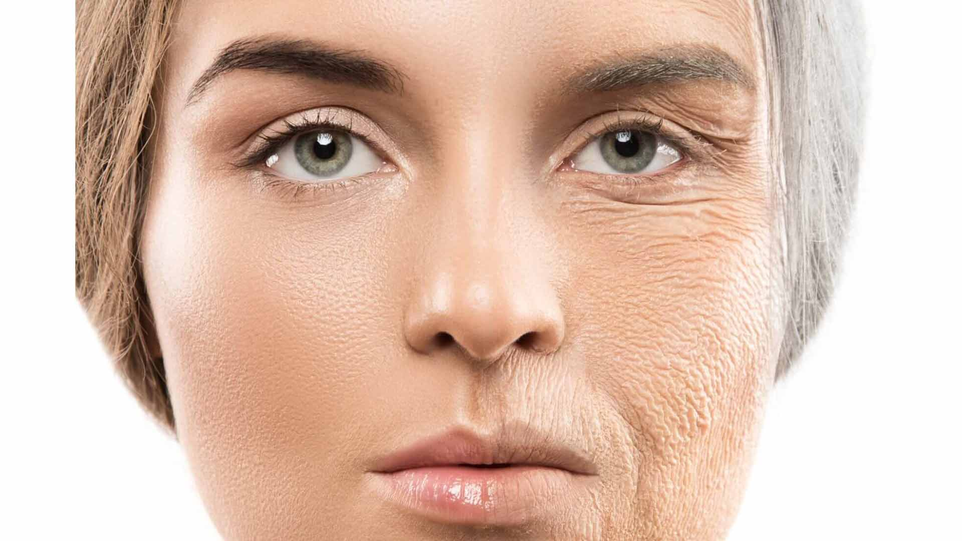How to Slow Down and Reverse Aging
