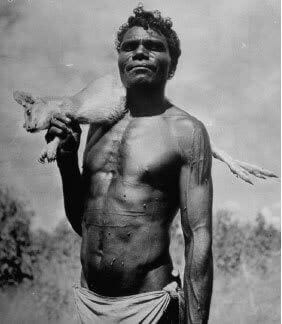 Physique of Australian aboriginals