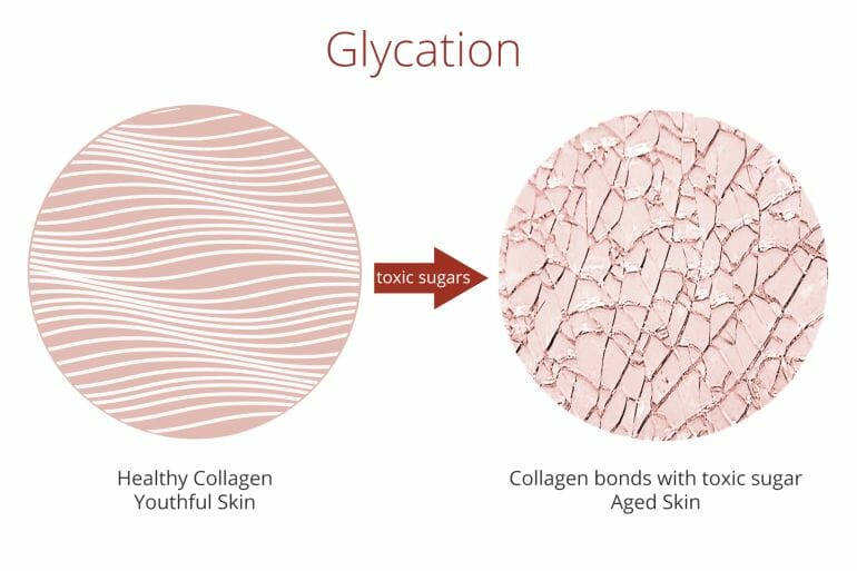 Glycation damages cells and speeds up aging.