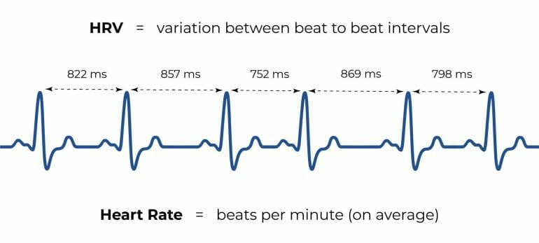 A graphical explination of heart rate variability.