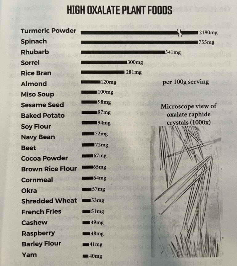 High oxalate plant foods (source: The Carnivore Code).