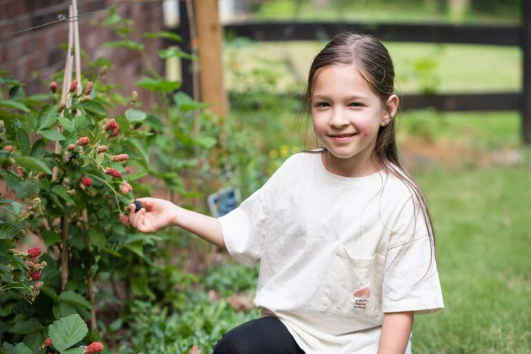 A photo of Michael Kummer's daughter Isabella picking berries.