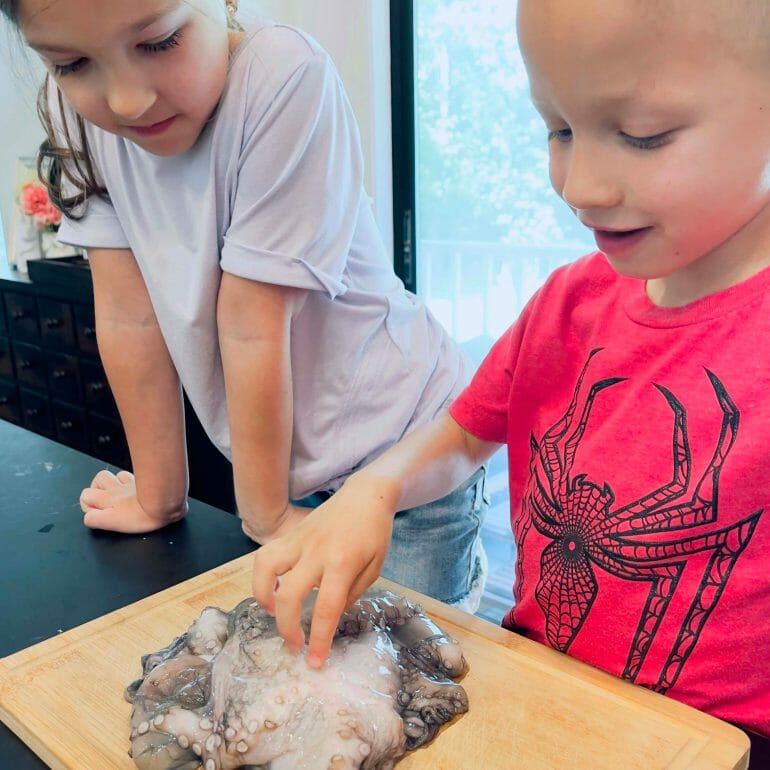 Michael Kummer's son and daughter looking at an octopus that's about to be cooked for a meal.